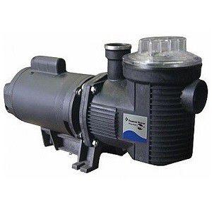 Bomba para piscina Pentair Sibrape BPF-150 Eagle de 1,5 cv