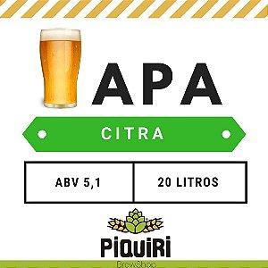 Kit receitas cerveja artesanal  20L American Pale Ale Citra