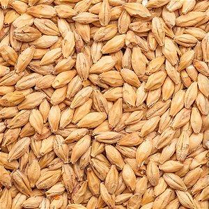 Malte Agraria Pilsen - 1kg