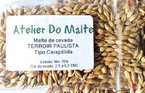Malte Atelier do Malte Carapálida - 100 g