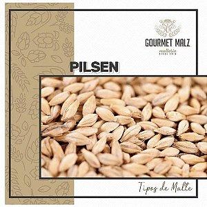 Malte Gourmet Malz Pilsen - 25 Kg (SACA)