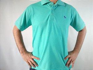 Camiseta Polo Masculina Rapina Várias Cores Bordado