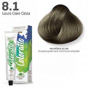 COLORAÇÃO SEM AMÔNIA COLORATTO 60G LOURO CLARO CINZA 8.1