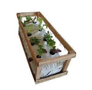 Kit horta - com mudas ou sementes - Manah da Terra