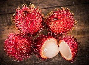 Rambutan/rambutão - 1 Muda - Livre De Agrotóxicos!