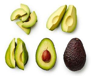 Abacate Avocado Enxertado - Muda Pequena