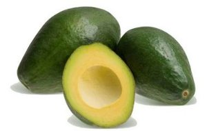 Abacate Avocado Hass - 1 Muda Enxertada - Sem Agrotóxicos!