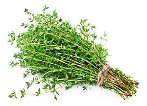 Tomilho - 1 Muda - Cultivo Livre De Agrotóxico!