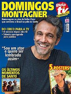 GUIA DA TEVÊ SAUDADE 3 - DOMINGOS MONTAGNER (2016)