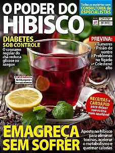 O PODER DO HIBISCO - EDIÇÃO 2 (2017)