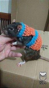 Colete em Crochet