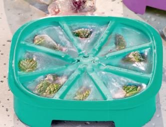 Forma para Gelo Triangular Verde - Tupperware