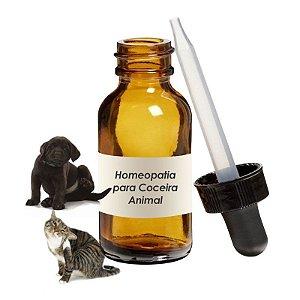 Homeopatia para Coceira Animal
