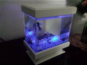 Beteira 4 Litros - Com Iluminação Betta Color - Lançamento