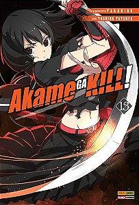 Akame ga Kill! Vol.13