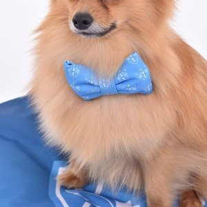 Laço/Gravata Paysandu - Azul