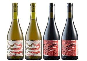 Vinhos Vivente Barbera 2020 Tinto e Chardonnay 2020 Branco - 4 unidades.