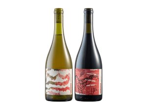 Vinhos Vivente Barbera 2020 Tinto e Chardonnay 2020 Branco - 2 unidades.