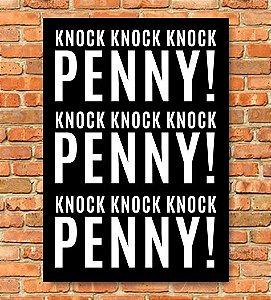 Placa Penny