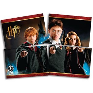 Painel Decorativo 4 Lâminas Harry Potter