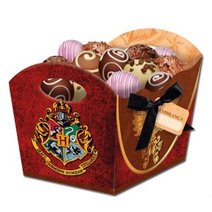 Cachepot com Fita Tag Harry Potter C/8