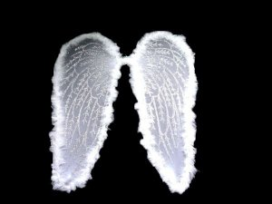 Asa de Anjo/Fada Branca Grande