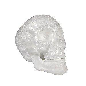 Crânio C/ Mandíbula Branco | Halloween