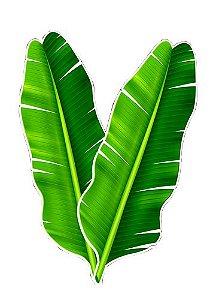 Folha Bananeira C/2 | Festança