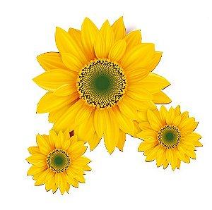 Flor Girrasol C/3 | Festança