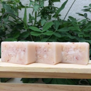 Pacote 3 Shampoos Sólidos - Natural e Vegano