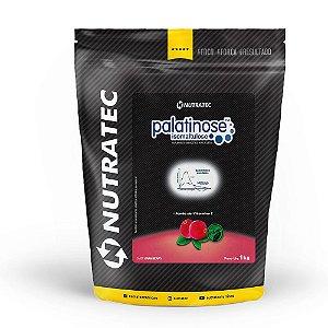 Palatinose 1kg