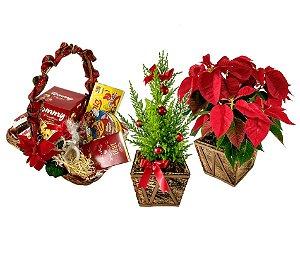 Kit de Natal Especial