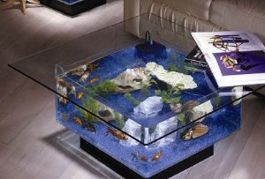 Mesa de Centro Caribe em Vidro Formato Aquário