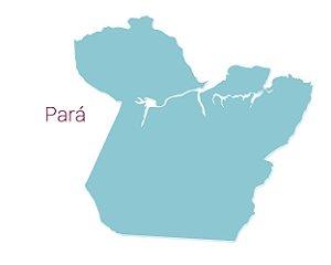 Pará - Distribuidores Linha Profissional