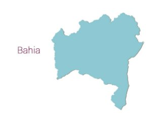 Bahia - Distribuidores Linha Profissional