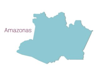 Amazonas - Distribuidores  Linha Profissional