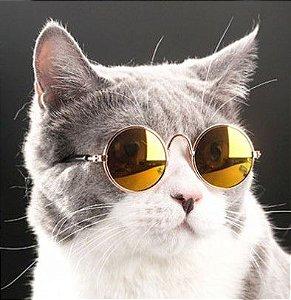 Óculos Cat - Dourado