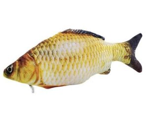 Peixe Carpa com Catnip