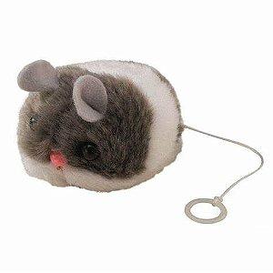 Ratinho que Vibra
