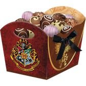 Cachepot Harry Potter com 08 unidades