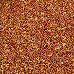 Painço Vermelho - 500g