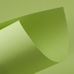 Papel Color Fluo Green
