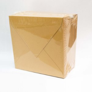 Lote LE049 - Envelope Aba Bico 10,0x10,0 - 50 unid.