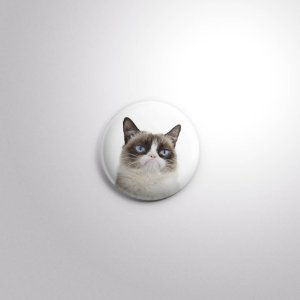 Botton Grumpy Cat