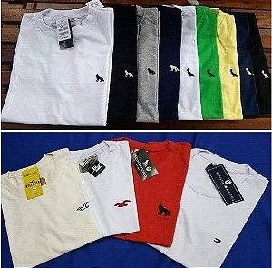 24 Camisetas sò com Logo Gola V ou Redonda.