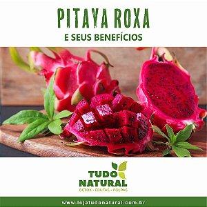 Pitaya Roxa e Seus Benefícios