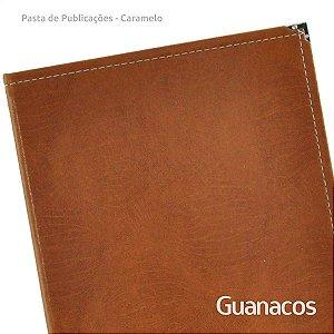 Pasta Publicações de Campo - Caramelo