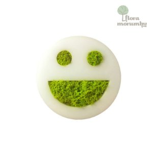 ECOTICON NATURAL SMILEY