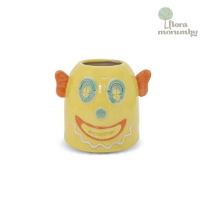 VASO CR CLOWN MOREIRA 17X20X17D VERDE