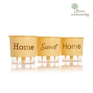 VASO AUTOIRRIGAVEL N2 KIT HOME SWEET HOME - PESSEGO